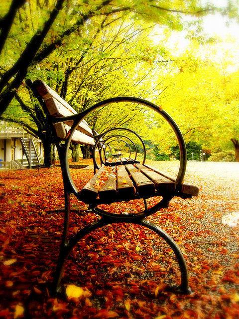 otoño